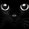 blackkittendoom userpic