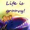 Life is groovy