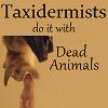 taxidermists