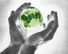 эко-мониторинг, ecomonitoring, ecology, экология