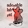 adorable lab rat