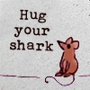 caitri: hug your shark