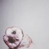 Tsuki: icon 40