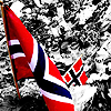 Norway - flag among flowers