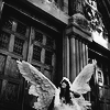 Engel fliegen einsam