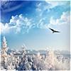 зима небесная