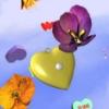 walkintheworld userpic