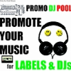 dj, label, promopool