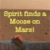 Moose on Mars