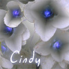 cindy_m userpic