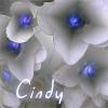 cindy_m userpic