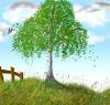 naturerussian userpic