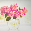 marchskies: pink bouquet
