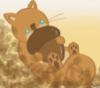 lessquirrel userpic