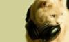 superdetka_a5na userpic
