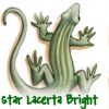 Star Lacerta Bright