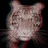 itzeasier2run userpic