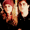 HP :: H/HR :: Pairing
