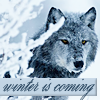 wintercoming