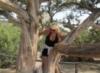 на можжевеловом дереве