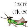 Smart Cricket
