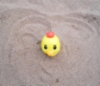 Ducky Buried in Sand