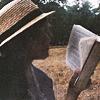 Anna: book