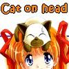 cat on head