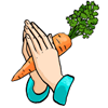 салатшоп, salatshop