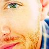 Sandycub: Jensen