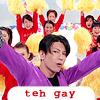 teh gay