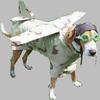 собака-самолет