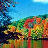 Германия. осень. озеро