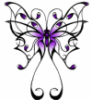 magickmoons: butterfly