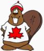 bobrodetel userpic