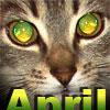 april_ra userpic