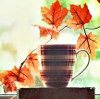 autumn leaves & cup