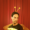 Abed Bee