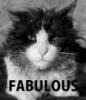 aaa_mazing: fabulous