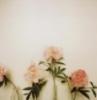 acrylic_plum userpic