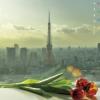 ai2196 userpic