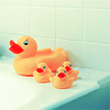 picture - duckies