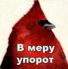 wasp_rw userpic