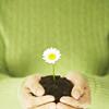 crunchyscorpion userpic