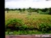 timangkol userpic