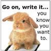 write it