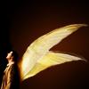 SPN Wings