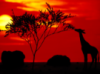 south_afrika userpic