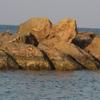 камень-сердце