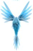 blueskyhawk